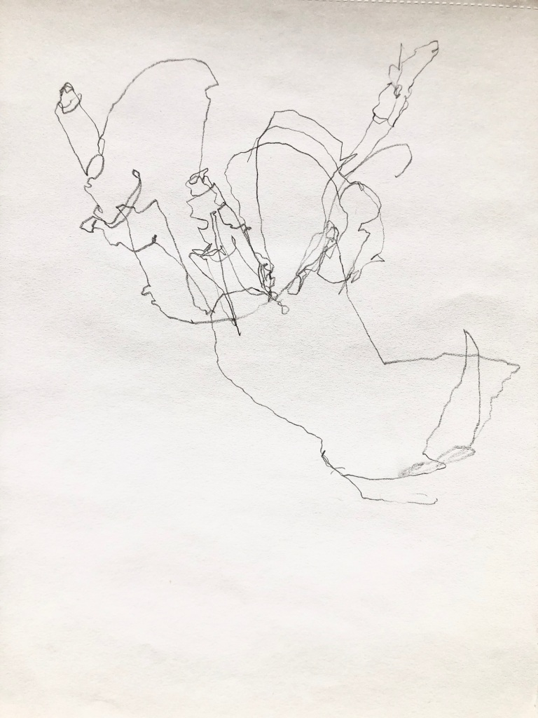 To show the line quality of a blind contour drawing